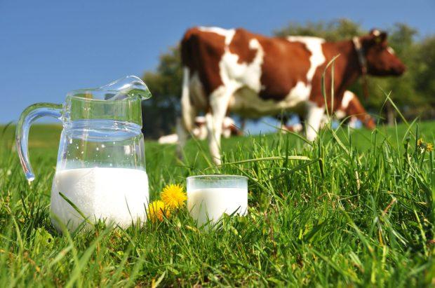 cow-milk-1200x797